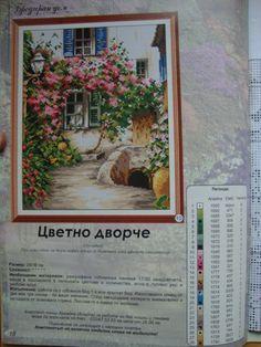 Gallery.ru / Фото #1 - ЦВЕТНО ДВОРЧЕ - Evgenia49