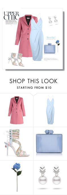"""Expensive and cheap!"" by bv-b ❤ liked on Polyvore featuring Alberto Biani, Boohoo, Sophia Webster, Coast, SONOMA Goods for Life and Escalier"