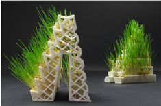 GROWLAY 3D Printer Filament Allows You to Grow Plants, Mushrooms or Even Cheese. read more - https://bit.ly/2Ku6lUG #3DPrinting #3DPrintingMaterials #3Dprintingservices