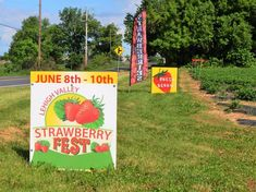 The 2018 Lehigh Valley Strawberry Fest June 8th, 9th,10th