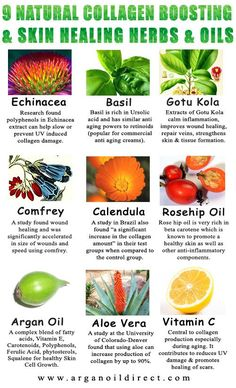 Research Identifies 14 Natural Oils for Skin Firming, promoting collagen & Healing. Learn more with full links to research and studies. http://arganoildirect.com/collagen-boosting-the-benefits-of-argan-oil-and-topical-vitamin-c #arganoil #collagen #antiaging