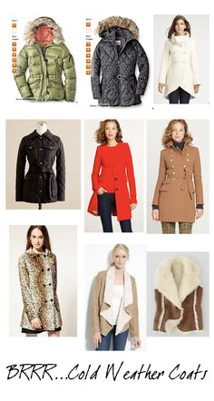 Leopard double breasted coat ..yes please ! via elements of style blog
