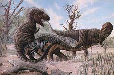 Resultado de imagen para daspletosaurus