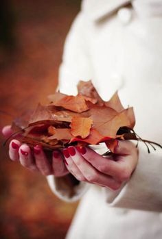 give into the beauty of Autumn.