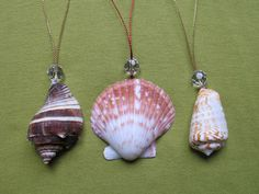 Sea Shell Ornament | Craft Snob