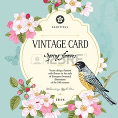 Vintage vector card spring  Bird on a branch of apple blossoms pink flowers on mint background