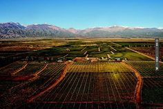 Cool! - Argentina wine country | CHECK OUT MORE IDEAS AT WEDDINGPINS.NET | #weddings #honeymoon #weddingnight #coolideas #events #forhoneymoon #honeymoonplaces #romance #beauty #planners #cards #weddingdestinations #travel #romanticplaces