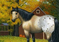 A BUCKSKIN BEAUTY.....a buckskin appaloosa relaxes near a barn on a fall day filled w bright pumpkins & colourful leaves.....PRINTED