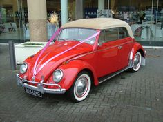 beetle car - Google Search