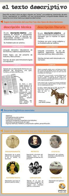infografia-texto-descriptivo.jpeg (1192×3403)