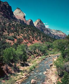 Virgin River Zion Utah Photography River by lostkatphotography