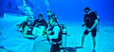 Cozumel Excursions in Cozumel 75% OFF BEST Cozumel Tours of ...
