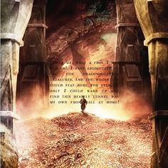 #LoHobbit #DesolazionediSmaug #TheHobbit #Hobbit