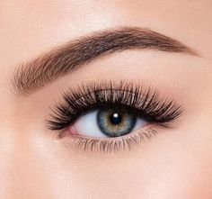 5a0060ebee6 Description Fake It Video EYECONThese full-on, fanned-out lashes create  instant doe. Morphe UK