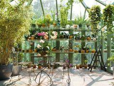 Jardin d'hiver: invitez la nature dans votre espace maison!