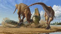 Tyrannosaurus Rex v Deinosuchus Prehistoric Wildlife, Prehistoric World, Prehistoric Creatures, Dinosaur Art, Dinosaur Fossils, Dinosaur Sketch, Les Reptiles, Dinosaur Pictures, Carnivore