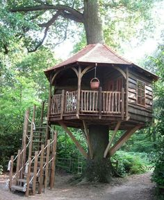 I like that they_re not afraid to have the trunk go through the roof. Cubby Houses, Play Houses, Importance Of Trees, Building A Treehouse, Treehouse Ideas, Tree House Plans, Through The Roof, Tree House Designs, Tree Tops