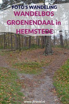 Ik maakte een herfstwandeling in Wandelbos Groenendaal in Heemstede. De foto's die ik tijdens deze wandeling maakte, zijn nu te zien op mijn website. Kijk je mee? #wandelen #wandelbosgroenendaal #heemstede #jtravel #jtravelblog #fotos