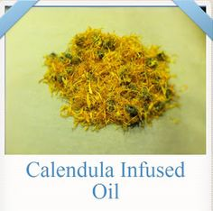 How to make Calendula Oil. Calendula oil is a healing oil that can be used on open wounds, unlike Arnica which can only be used on closed infections and bruises. Healing Oils, Healing Herbs, Medicinal Herbs, Natural Healing, Flavored Oils, Infused Oils, Herbal Remedies, Natural Remedies, Calendula Oil