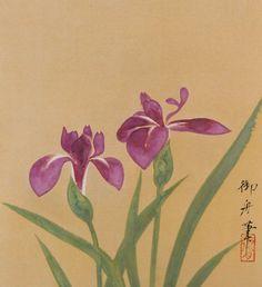 速水御舟 Gyoshū Hayami (1894 - 1935)