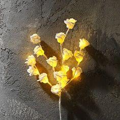 Tak met rozen verkrijgbaar in de kleur wit, 16 LED lampjes, artikelnummer: 665600. Afmeting: 45 cm, €5.99,- Antelope Canyon, Nature, Plants, Accessories, Flora, Plant, The Great Outdoors, Mother Nature, Planting