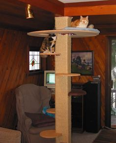 House Built For Cats | steel plate is bolted to the corner brackets. This is a very sturdy ...