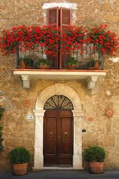 Red geraniums on golden stone. Tuscany