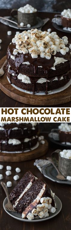Hot Chocolate Cake with marshmallow buttercream! Made with real hot chocolate…