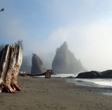 Brookings, Oregon.