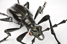 Edouard Martinet / Longicorn Beetle: 66 X 50 X 24 H cm Abdomen : Two Citroën Traction boot handle , black Solex fenders Thorax : bike light  Head : old Champagne cork remover, caster wheel covers Eyes : bike reflectors  Legs : large upholstery tacks, parts of shoe tree in aluminium, pieces of winshield wipers, bike brake parts, bike chain