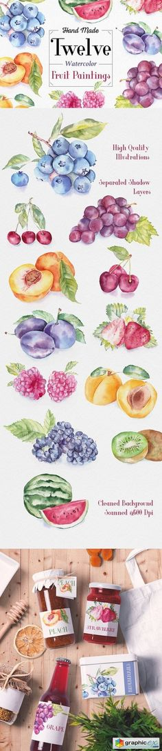 Fruit Watercolor Illustrations stock images