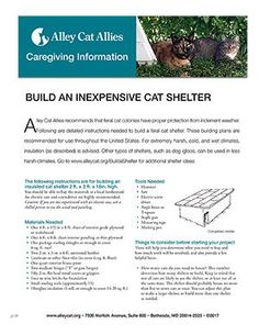 Build an Inexpensive Cat Shelter | Alley Cat Allies