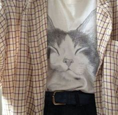 f7980b650 126 Best T-shirt (cat theme) Awesome images in 2019   Sweatshirts ...