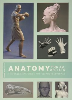 Anatomy for 3D artists: the essential guide for CG professionals / tekijät Matthew Lewis, Simon Morse ym.
