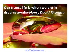 Our truest life is when we are in dreams awake-Henry David Thoreau