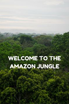 Heading to Peru?  Think about adding the Amazon Jungle to your itinerary.  Click to read more about what my experience was like staying at the ecolodge Refugio Amazonas.  Decide for yourself whether you want to stay in the middle of the jungle!