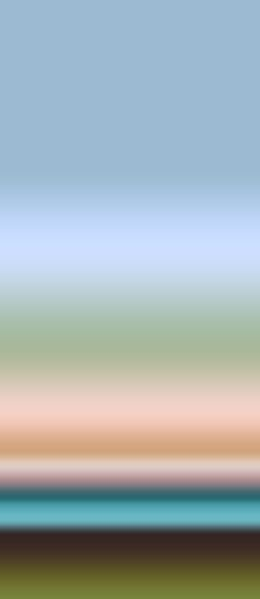 Sunset - Swallow Ombre : Designer Wallcoverings™