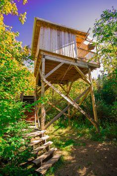 Chambre avec Dôme en Verre - Cabane 2 Saisons - Forêt de Canopée Lit ...