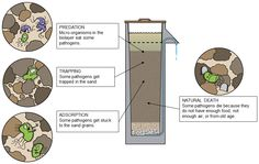 How a BioSand Filter Works