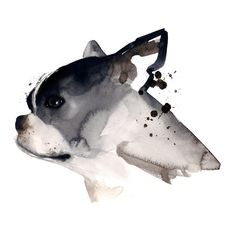 Beautiful dog art! Get a Free Consultation for your #dog from our Friends at Nature's Select http://naturalpetfooddelivery.com/nsd/usa/free-consultation/