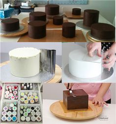 The Basics Bible - All About Round Cakes, Square Cakes and More Downloadable Tutorial