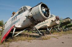 Antonov An-2 Colt Ан-2 - Theo van Vliet