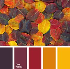 25 Color Palettes Inspired by the Pantone Fall 2017 Color Trends Fall Color Palette, Colour Pallette, Color Combos, Fall Color Schemes, Orange Color Schemes, Yellow Color Palettes, Copper Colour Palette, Fall Paint Colors, Paint Combinations