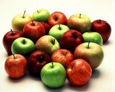 Recopilatorio de recetas : Recetas con Manzana en Thermomix (Recopilatorio)