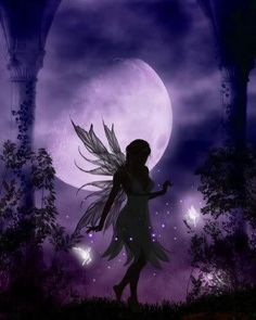 Moon Light Fairy