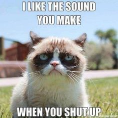 Grumpy cat - sometimes I wish I was mean enough to say this to some people