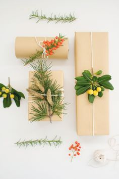 DIY Botanical Gift Wrap - LovelyIndeed (I'm loving those yellow berries.)
