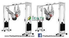 © Sasham | Dreamstime.com - Exercising for bodybuilding. Turns hips on the stick the overhang