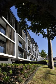 The Village @ Coorparoo, Brisbane - Retirement Village by S3 Architects    Building 1 - Goring Street Elevation