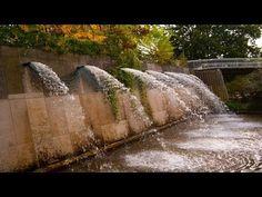 Unique Flora und Botanischer Garten K ln Flora and Botanical Garden Cologne FullHD Places to Visit Pinterest Garten